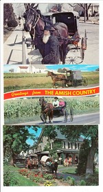 3 AK Amish-People, USA